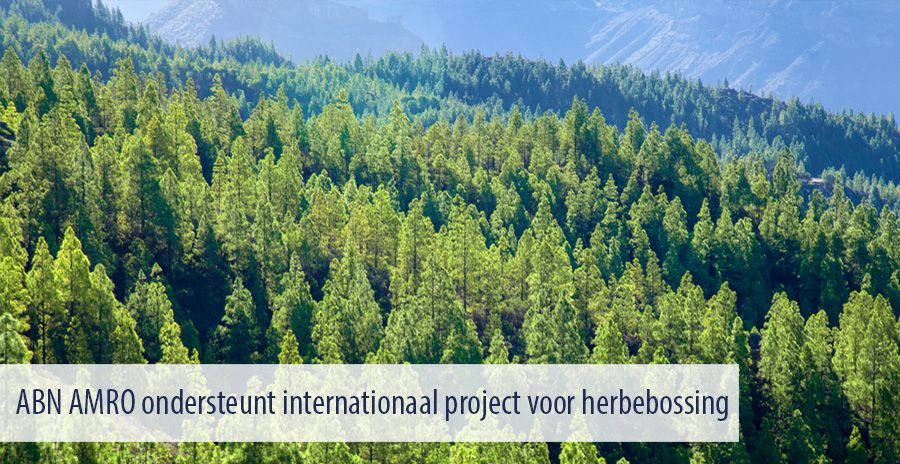 ABN AMRO ondersteunt internationaal project voor herbebossing
