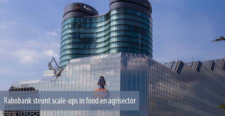 Rabobank steunt scale-ups in food en agrisector
